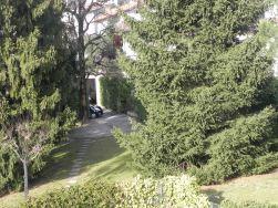 Veduta del giardino di ingresso